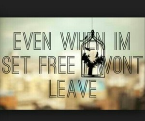 i wont leave and even when i'm set free image