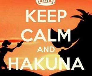 hakuna matata, keep calm, and timon image