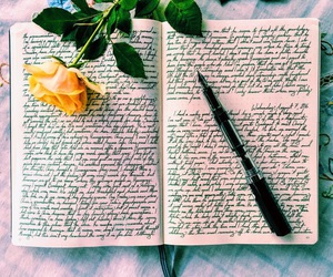 rose and writing image