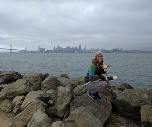 city lights, cute dog, and foggy image