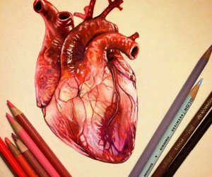 draw, heart, and lovethis image
