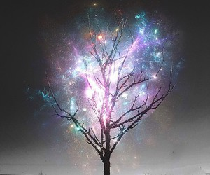 tree, light, and hipster image