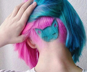 hair, cat, and blue image