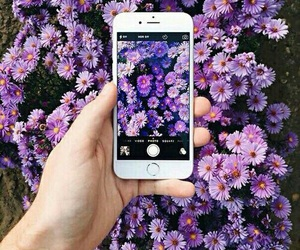 girly, cute, and iphone 6s image