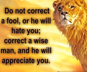 fool, wise, and quote image