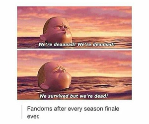 fandom, funny, and teen wolf image