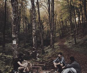 amazing, autumn, and camping image