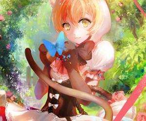 love live and rin hoshizora image