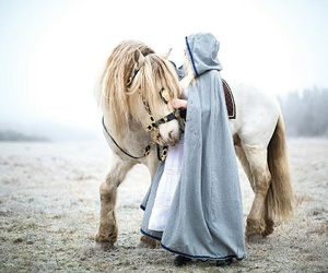 horse, fantasy, and aesthetic image