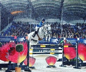 equestrian, ispiration, and vienna image
