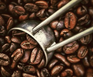coffee and coffee beans image