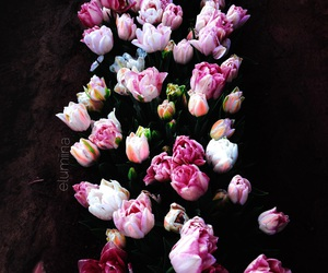 beautiful, flowers, and my image