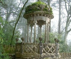 nature, garden, and architecture image