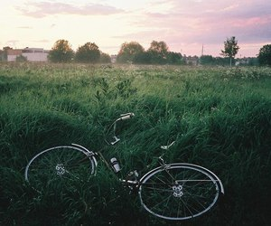 bike, green, and nature image