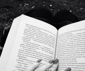 book, nature, and will image