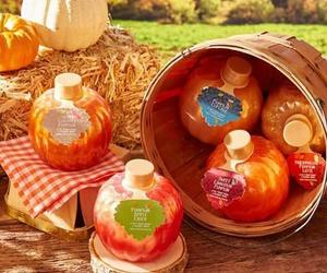 fall, hay, and pumpkins image