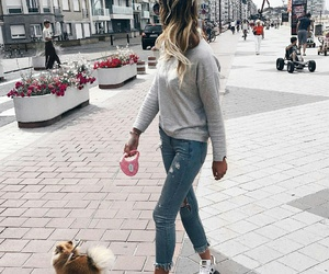 dog and fashion image