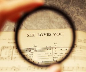 love, music, and she loves you image