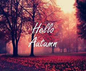 autumn, hello, and fall image
