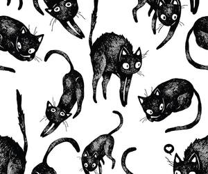 black, cats, and patterns image