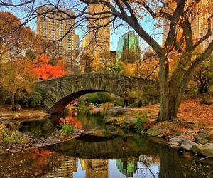 Central Park, new york, and travel image