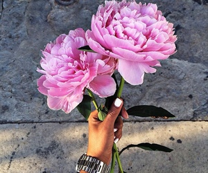 flowers, pink, and nails image