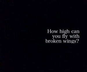 broken, fly, and wings image