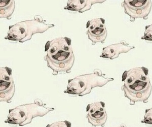 wallpaper, dog, and pug image