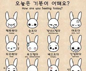 korea, hangul, and korean image