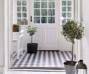 interior, plants, and windows image