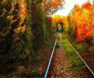 romania, beautiful, and tunnel image
