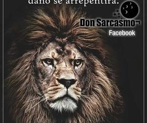 frases vida león image