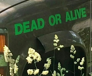 flowers, grunge, and car image