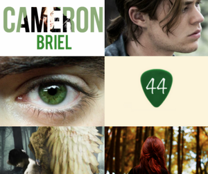 fallen and cam briel image