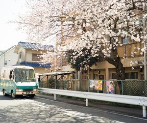 japan, bus, and sakura image