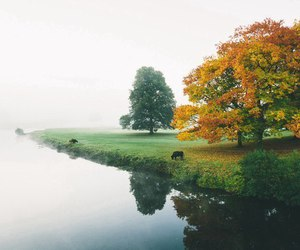 water, autumn, and fall image