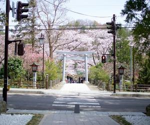 city, japan, and road image