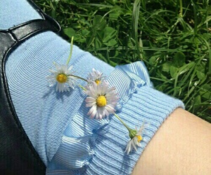 flowers, blue, and indie image