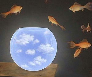 fish, art, and clouds image