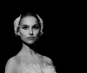 black swan, movie, and natalie portman image