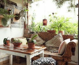 plants, decoration, and house image