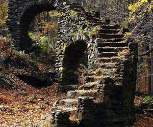 stairs, forest, and ruin image