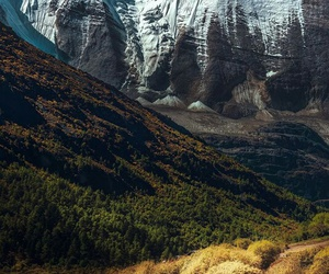 amazing, travelling, and fall image