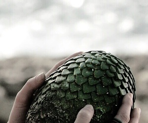 dragon, game of thrones, and egg image