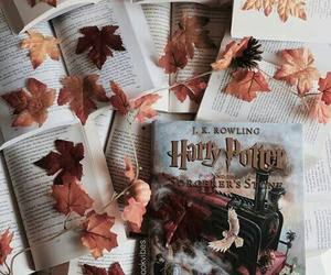 book, harry potter, and autumn image