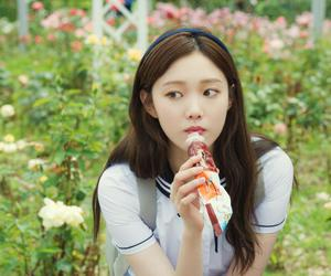 doctors, lee sung kyung, and model image