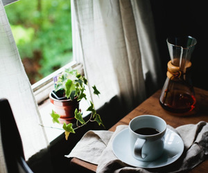 coffee, cozy, and home image