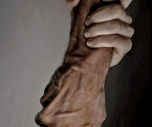 hands, wrists, and grip image