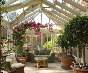 flowers, winter garden, and greenhouse image