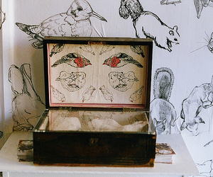 vintage, box, and animals image